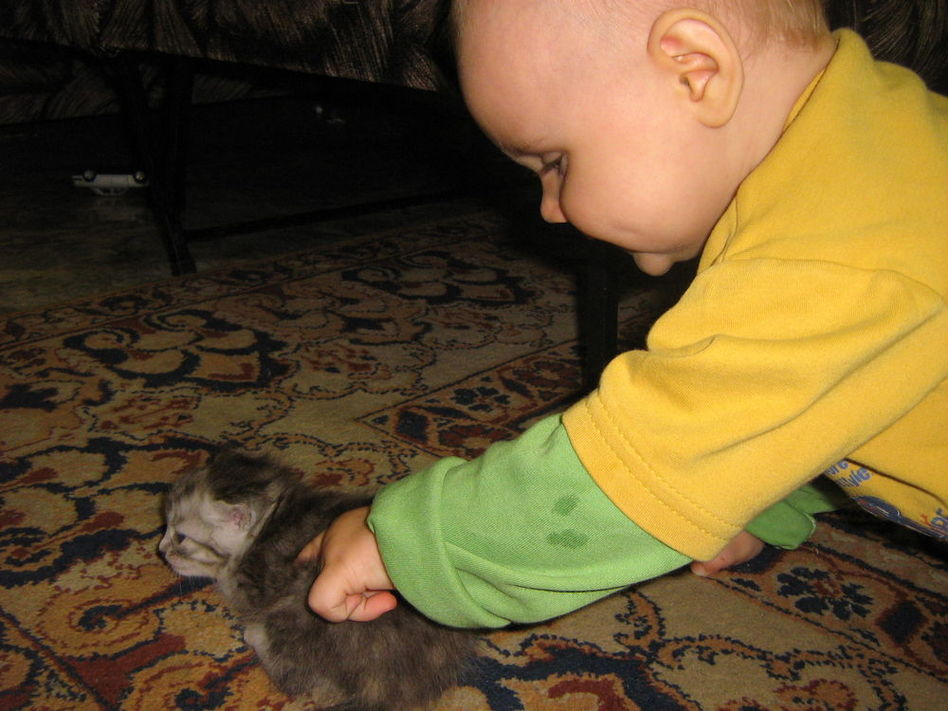 Ксюша с котенком играет