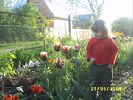 Мама посмотри какие суперские тюльпаны
