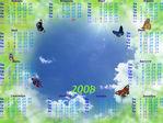 Бабочки 2008