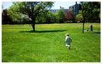 поле возле площадки...
