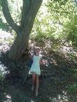 в  Сионском лесу
