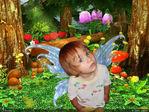 моя бабочка