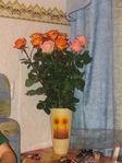 Мои цветочки..