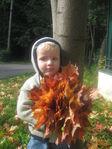 Вот и пришла осень.