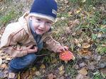 грибочек нашел.октябрь