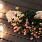 А,у нас ,тут своя атмосфера!Утро,цветочки везде ,виде гирлянд для летнего настроения!
