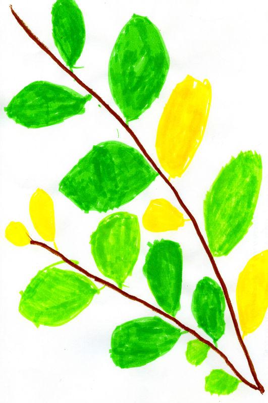 Осенние листья картинки цветные шаблоны для вырезания - 41