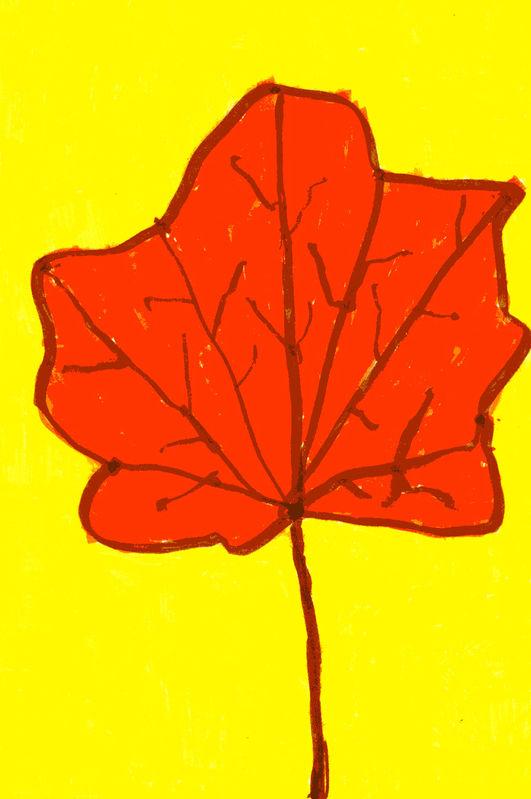 Кленовый лист: pictures.detstvo.ru/flowers/1345.html